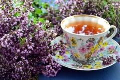 Что такое тизан? Виды тизана? Как выбрать листовой чай? KAVAUA